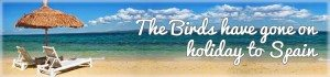 The Birds have gone on holiday to Spain banner graphic