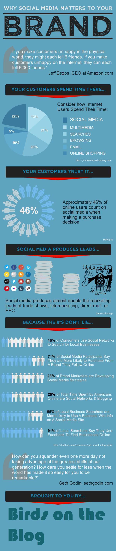 Social Media Branding Infographic