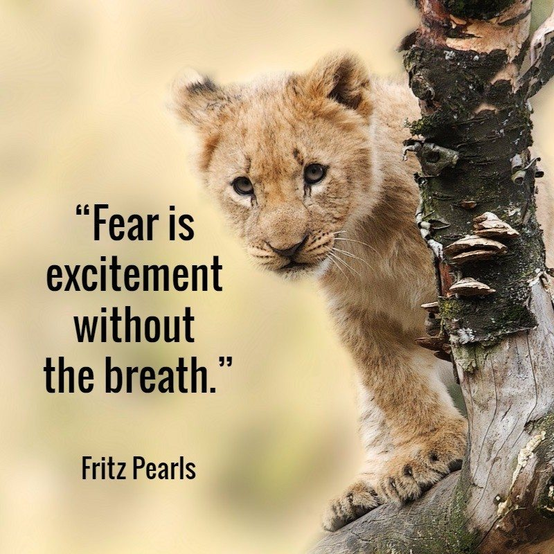 Quote Fritz Pearls